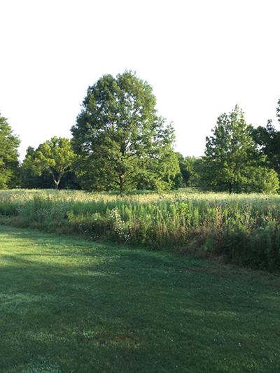 SW_golf course_Hole16