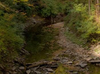 Sharon Woods Gorge Trail
