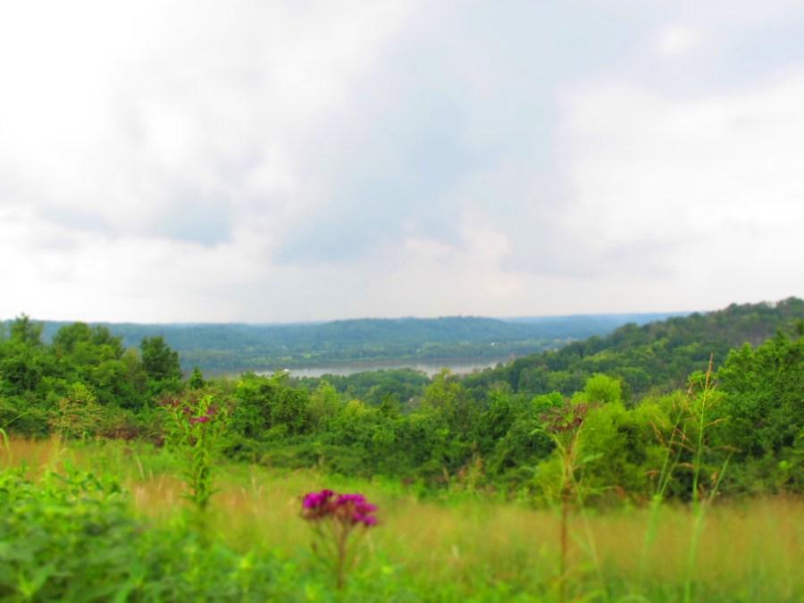 Woodland Mound, Ohio River Overlook