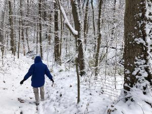 A woman in a blue winter coat walks down a snow-covered hill at Richardson Forest Preserve.