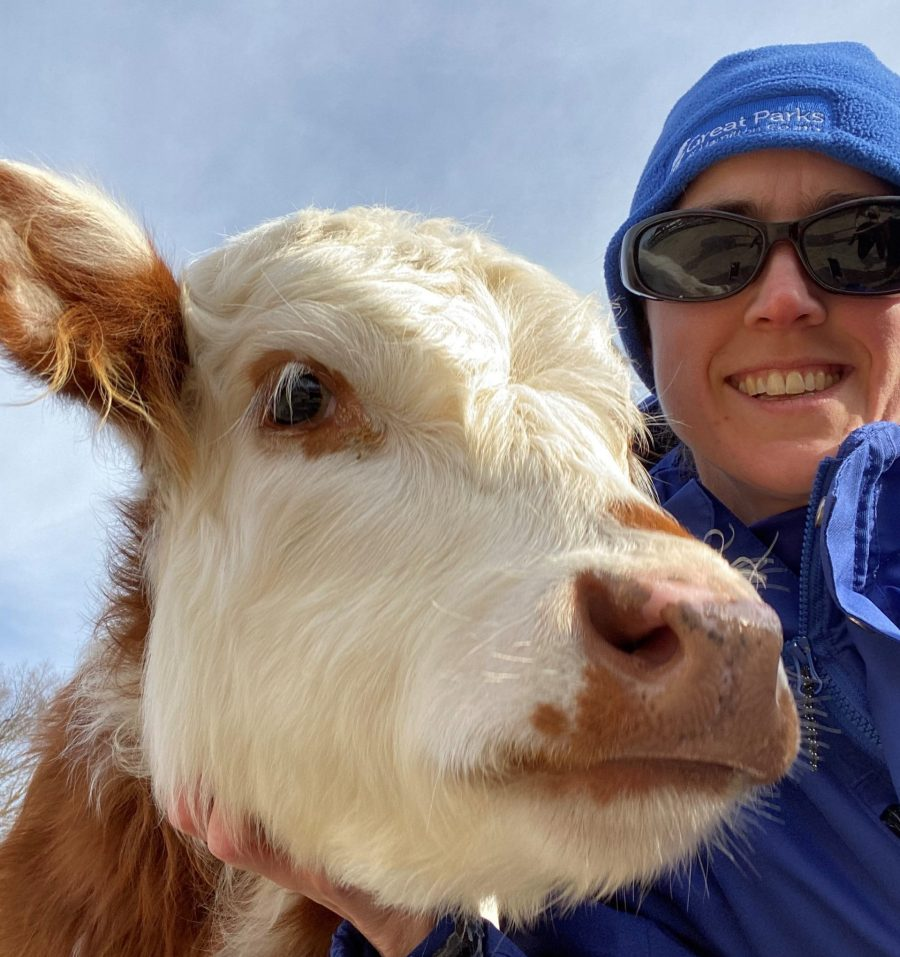 Nature Interpreter Ellen with mini-cow Gracie at Parky's Farm.