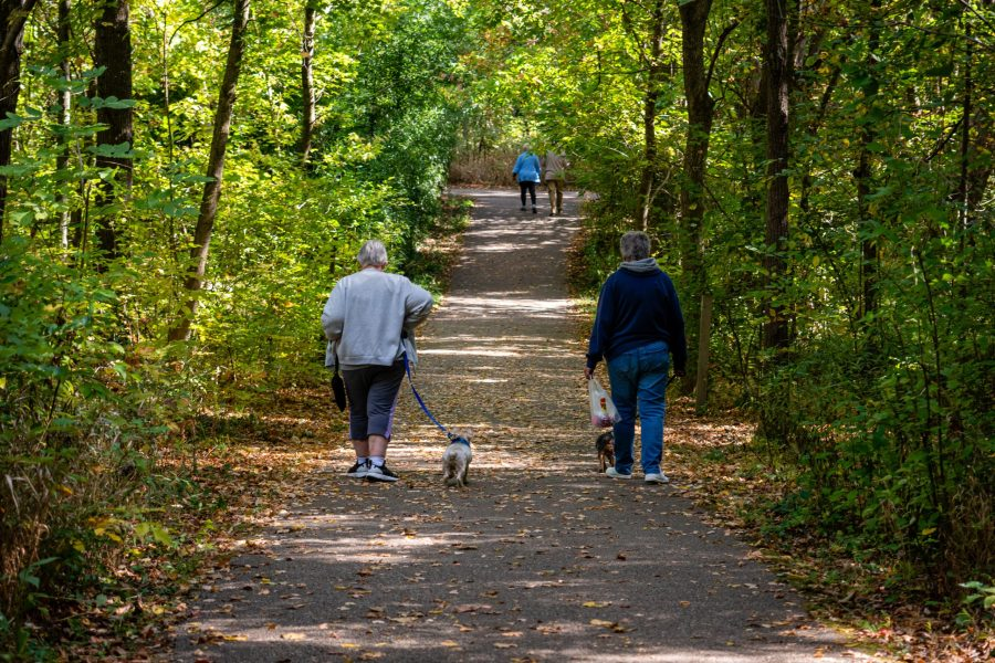 Two people walk their dogs along the waning shade of the Pin Oak Trail at Farbach-Werner Nature Preserve on a sunny fall morning.