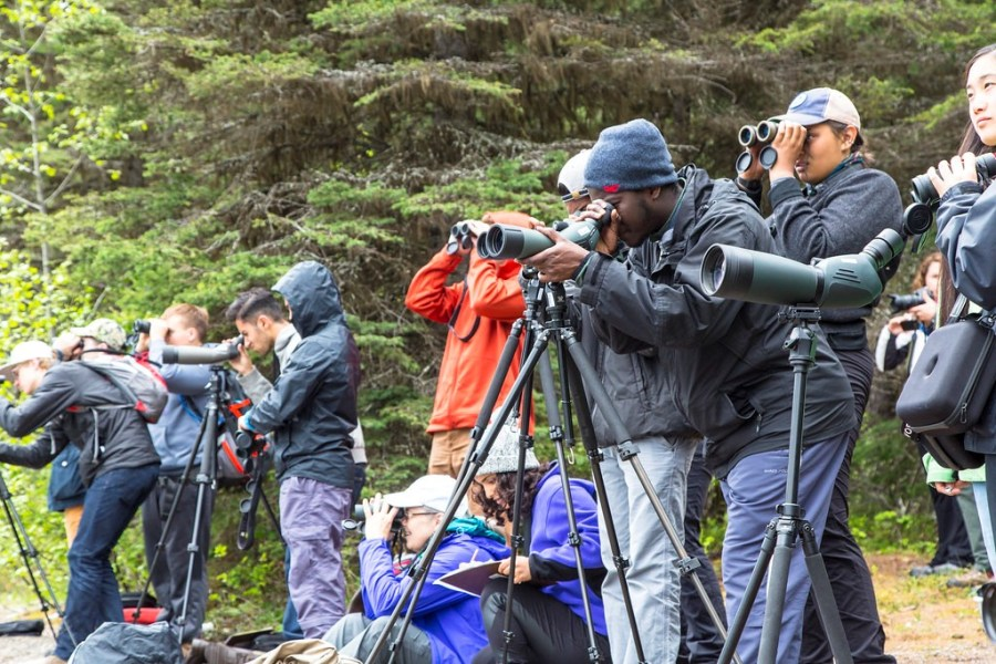 A group of people look through binoculars and telescopes during a bioblitz at a park.
