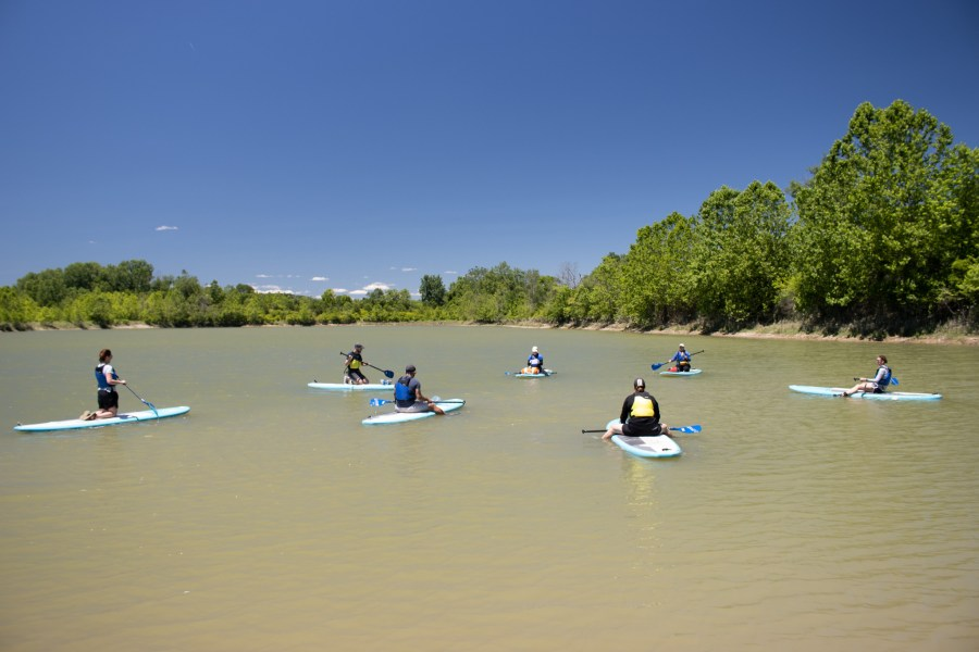 A group of people take a stand-up paddleboard class on a lake.