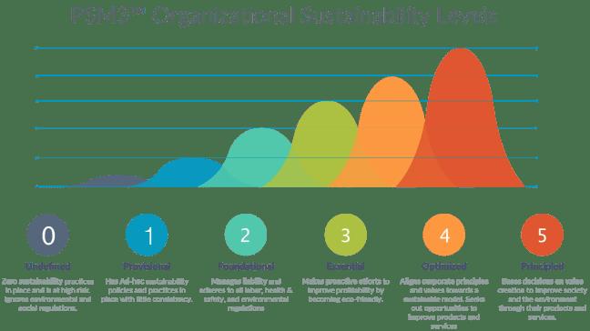 PSM3_organizational_sustainability_levels