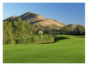 Goose Creek Golf Tee Times