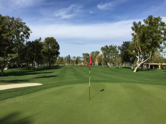 Golf Course Review Thunderbird Country Club
