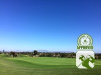 River Ridge Golf Club (LAKES) – Hole 16 greenside