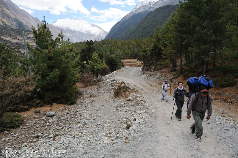 16-landscape-trekkers-porter-backpack-nepal-lower-pisang-manang-mountain-biking-annapurna-circuit-foto-radu-dumitrescu