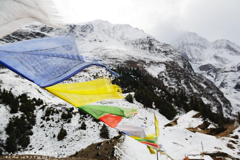 Imagine cu steaguri nepaleze de rugăciune, fluturând pe o stupă la 4200m altitudine.