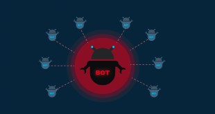 The danger of botnet network