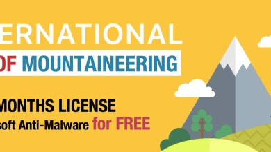Photo of International Day of Mountaineering FREE LICENSES from GridinSoft