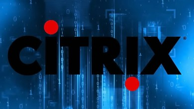 Dangerous Vulnerability in Citrix Software