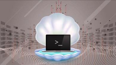 cyberattacks using web shells