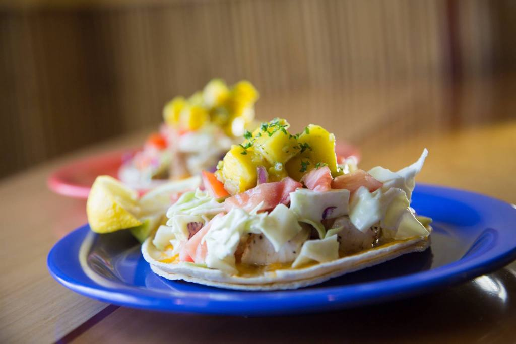 Two plates with delicious fish tacos at Coconut's Fish Cafe Cupertino