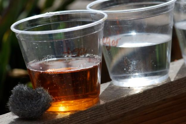 tea-and-water-pretest
