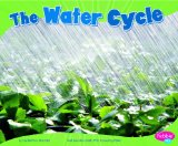 the-water-cycle
