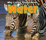 why-living-things-need-water