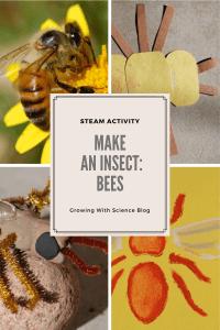making bee models for kids