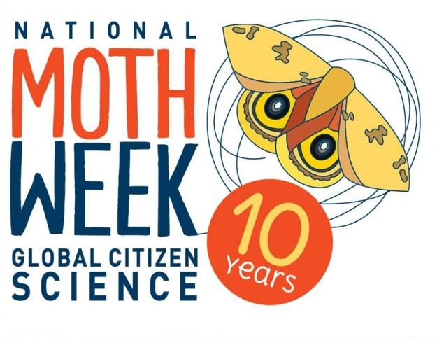 Celebrate #NationalMothWeek