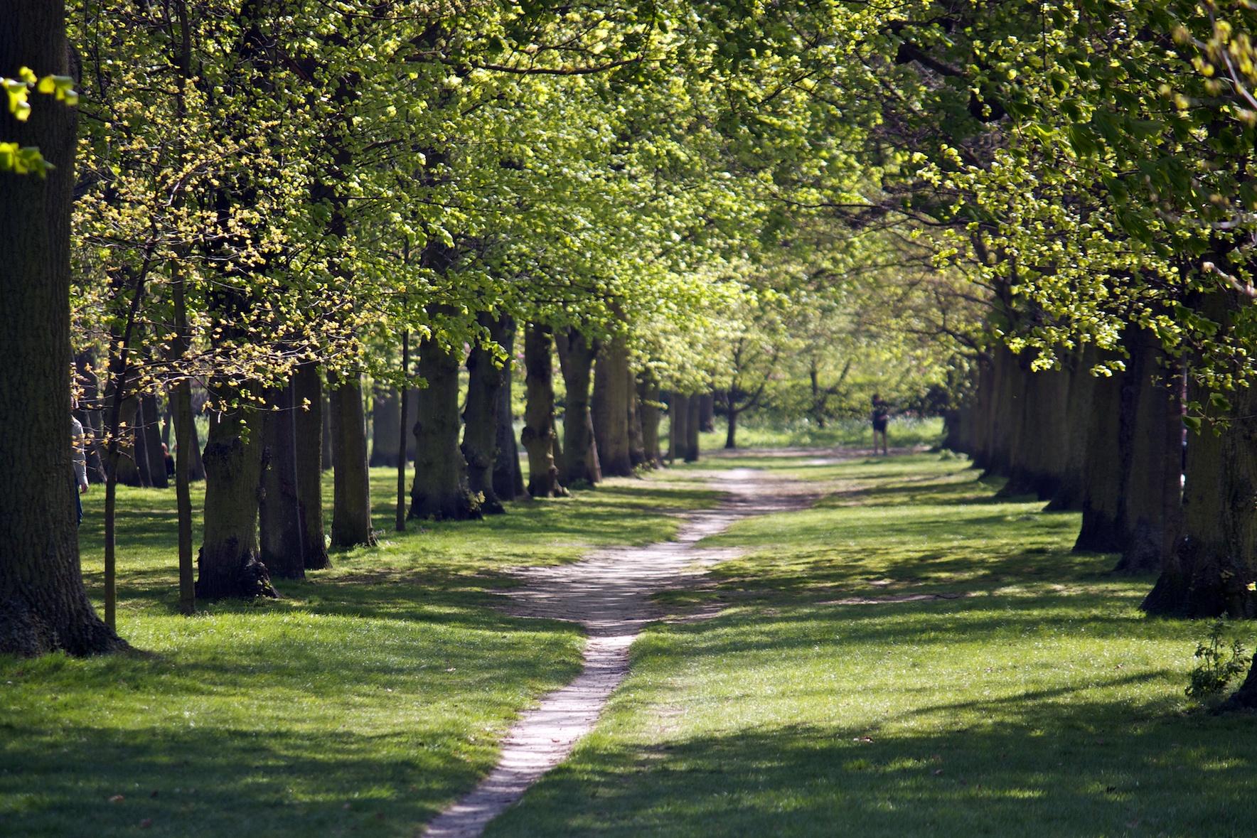 footpath-in-regents-park