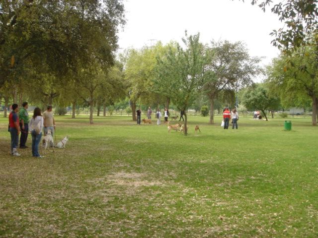 parque_perros_sevilla