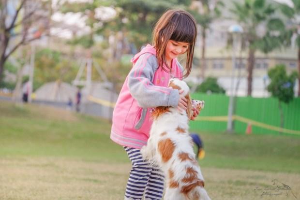 allergie chien jouer