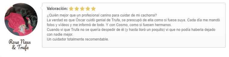 valoración Óscar Gudog Sagrada Familia