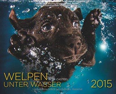 Welpen unter Wasser Kalender