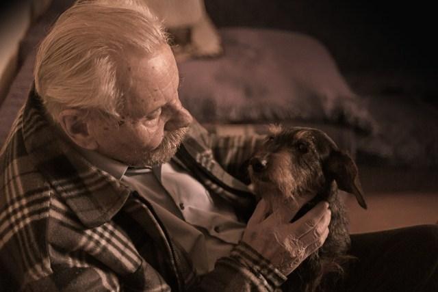 personnes âgées chien
