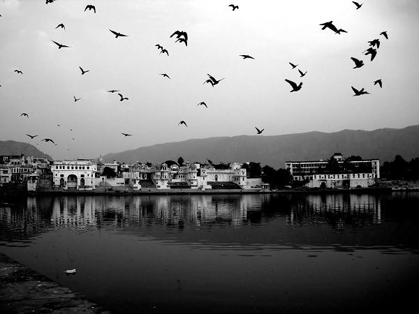 Pushkar Lake, Rajasthan  Image Source
