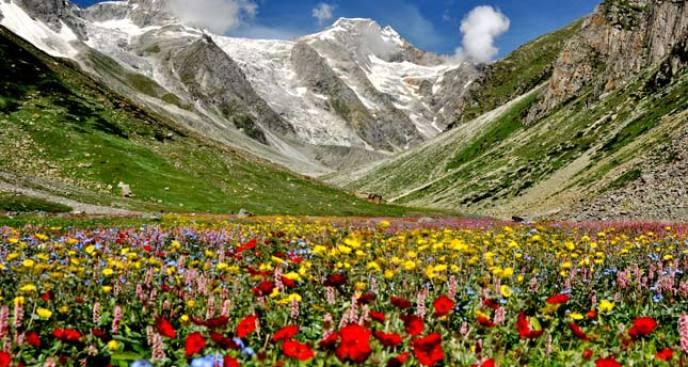valley-of-flowers-trek2