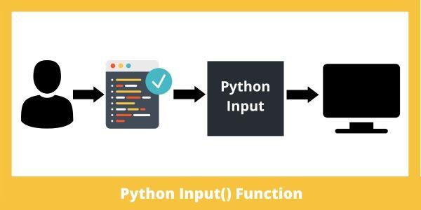 input() in Python