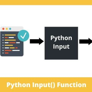 Python-How To Read Input As Numbers?[The Easy Guide]