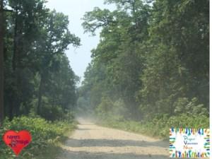 Durch den Nationalpark von Bardia