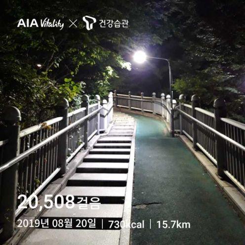 매일 2만보 걷기 2019년 8월 20일