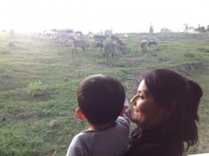 En el zoológico 2