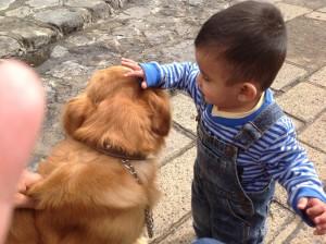 Jugando con el cachorro