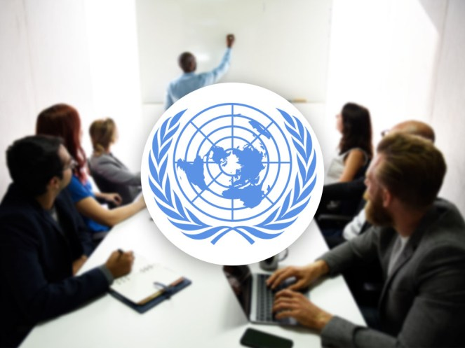 develop united nation