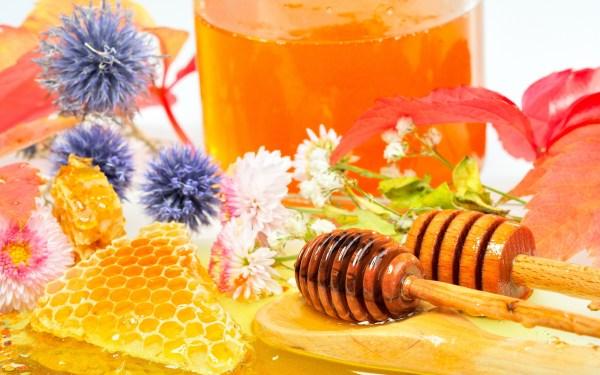 7 HD Honey Wallpapers