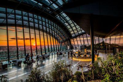 sky garden with a city sunset