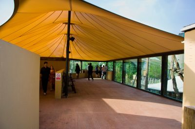 viewing platform at ZSL London zoo