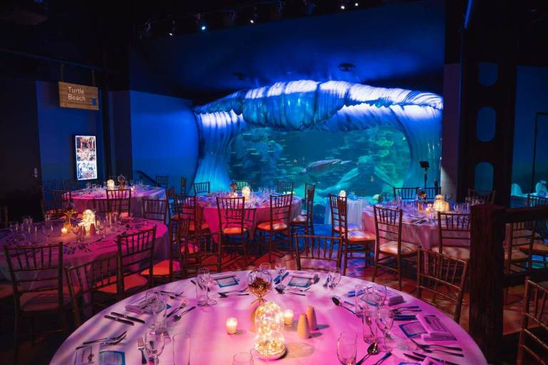 Merlin Entertainments - SEA LIFE Aquarium