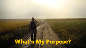Whats My Purpose?