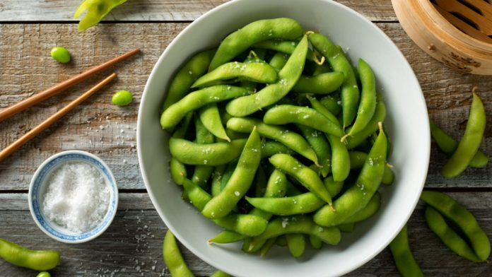 Can Dogs Eat Edamame? | Healthy Paws Pet Insurance