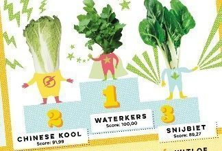 De 10 gezondste groenten