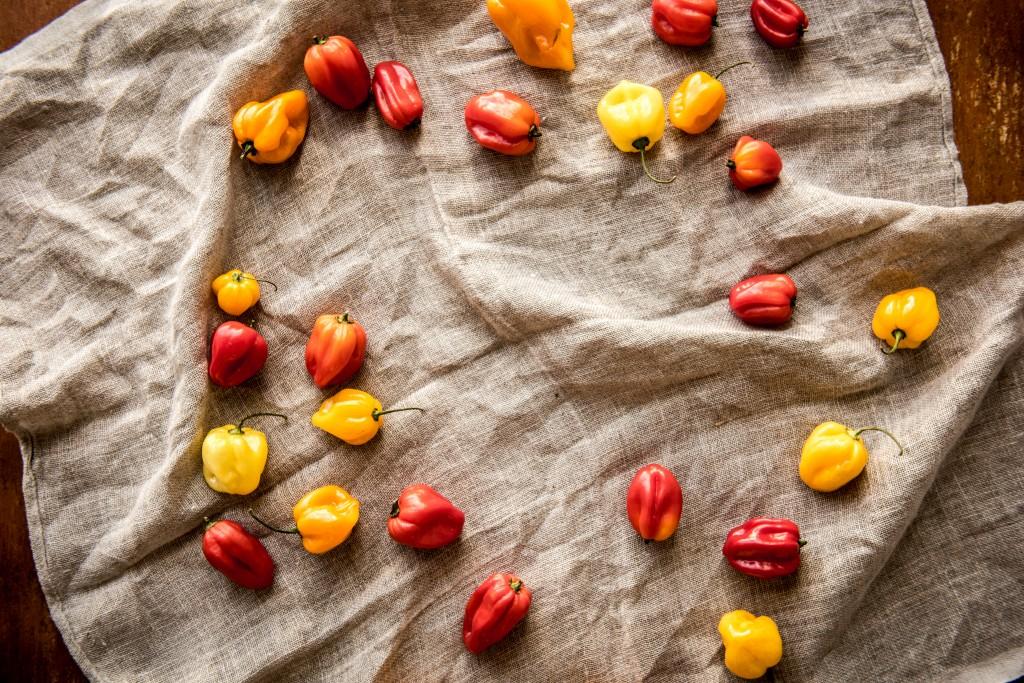 Chilisauce selber machen: Chilis
