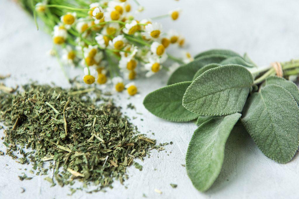 7 gesunde Teesorten: Brennnessel, Kamille, Salbei