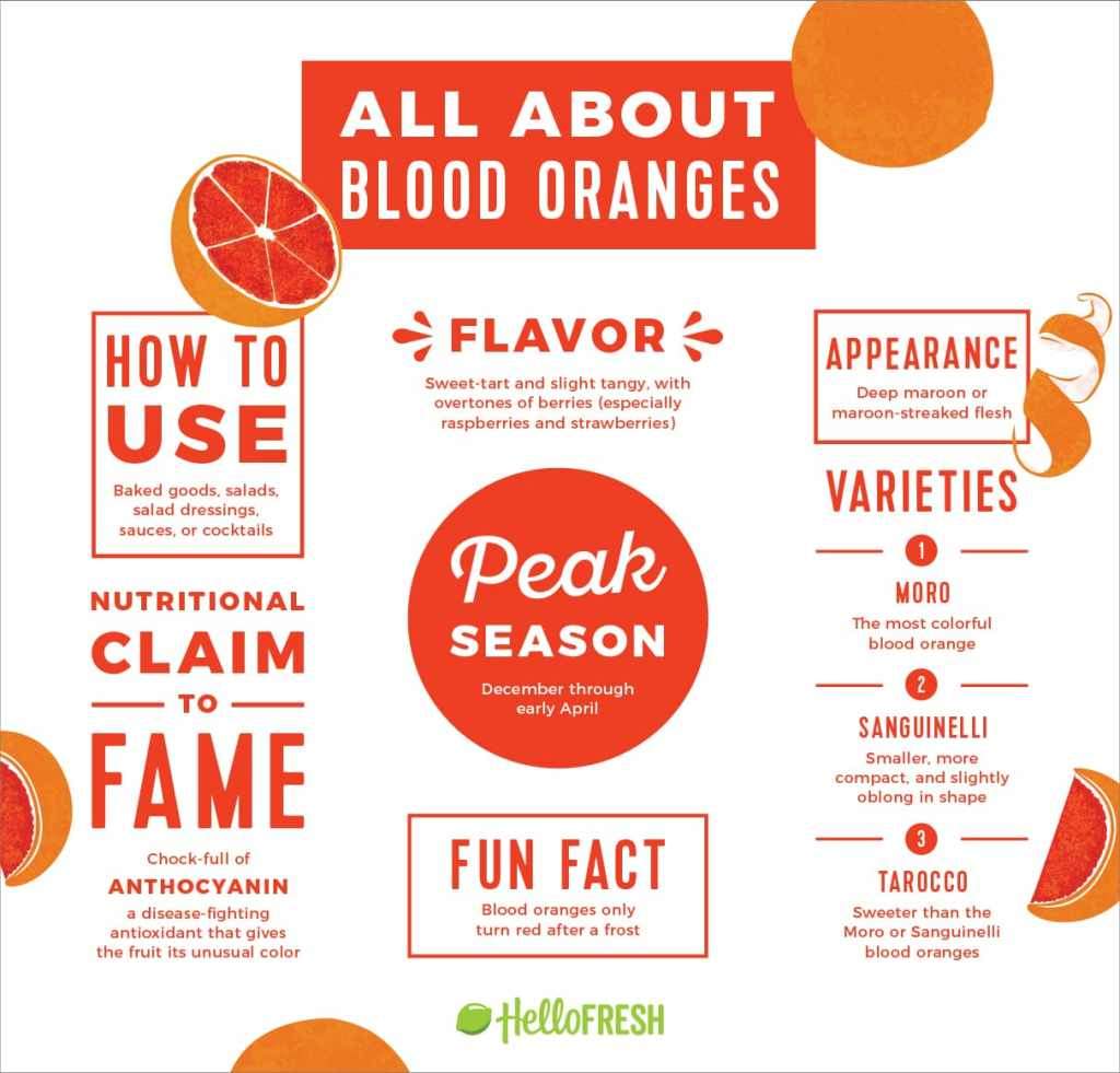 blood oranges-infographic-HelloFresh