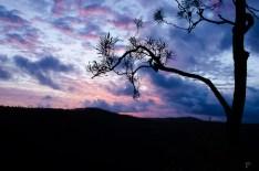 20120512-180453-Australien, Girringun National Park, Sonnenuntergang, Wallaman Falls, Weltreise-20120512-180453-Australien-Girringun-National-Park-Sonnenuntergang-Wallaman-Falls_DSC1063